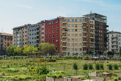 Urban farming sustainability concept, captured in Milan, Lombardy, Italy. Urban farming sustainability concept, captured in Milan, Lombardy, Italy Stock Photo