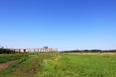 Urban farmland landscape Royalty Free Stock Photo