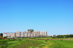 Urban farmland landscape. There are a lot of farmland around the big city Stock Images
