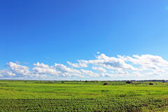 Urban farmland landscape Royalty Free Stock Image