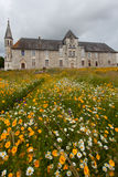 Urban flower field. Antique hospital of Saintes , France ,with Flowered meadow in the forefront Royalty Free Stock Image