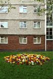Urban flower garden Royalty Free Stock Photos