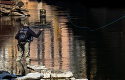 Urban fly fishing. In the middle of italian city Bassano del Grappa the water of Brenta River is so clean and clear than urban fly fishing is one of the main stock photography
