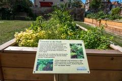 Urban garden in the city of Bayreuth stock photos