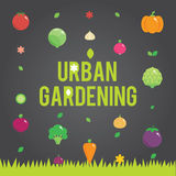 Urban gardening with vegetables icons set, seeds Stock Images