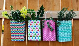Urban Gardening Stock Images