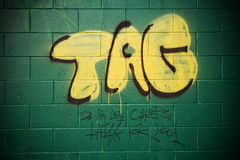 Urban Graffiti. Graffiti on a green cinder-block wall that reads: TAG - Do not let others think for you stock image