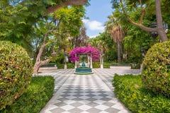 Urban green oasis in the Cadiz park