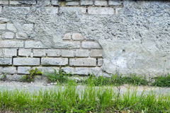 Urban grunge wall texture and green grass background Stock Image