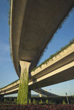 Urban highway overpass covered with plants and copy space for yo. Ur text Royalty Free Stock Images