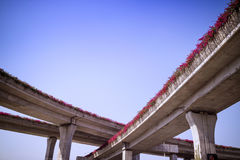 Urban highway overpass covered with plants. And copy space for your text Royalty Free Stock Image