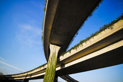 Urban highway overpass covered with plants. And copy space for your text Stock Photo