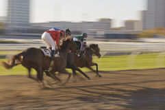Urban horse race Royalty Free Stock Photography