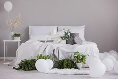 Urban jungle and white balloons in fashionable bedroom interior with large bed with cozy bedding, real photo with copy space on. The empty wall stock image