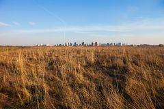 Urban landscape. Dry field and Kyiv in the distance Stock Photos