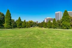 Urban landscape of green grass lawn Stock Photo