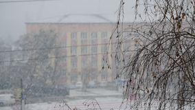 Urban landscape with snow falling in a city with leafless birch. Tree branch in foreground and a building in background on winter day and cars driving slowly stock video footage