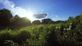 Urban lawn at sunset. Dynamic panorama against the sun by a lawn town with dandelions stock video