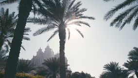 Urban life in Abu Dhabi. Sun shining through palm trees. Hotel Atlantis. Palm trees and buildings in the United Arab Emirates. Silhouette of an old building in stock footage