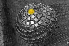 Urban life. Dandelion flower on the metalic ball. Urban life on the Earth. Earth day.  object.  Dandelion flower on the metalic ball Royalty Free Stock Image