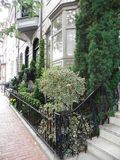 URBAN NATURE Beacon Hill Street Landscaping In Boston Royalty Free Stock Photography