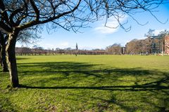 Urban Park on a Clear Winter Morning stock image
