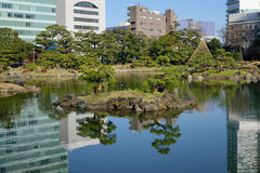 Urban park in Tokyo, Japan. Urban park with the lake in Tokyo, Japan Royalty Free Stock Photography
