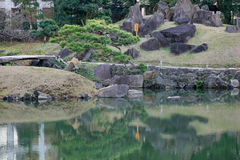 Urban park in Tokyo, Japan. Urban park with the lake and trees in Tokyo, Japan Stock Images