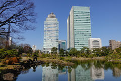 Urban park in Tokyo, Japan. View of Tokyo cityscape with gree park in Tokyo, Japan Royalty Free Stock Photography