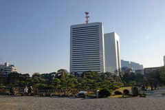 Urban park in Tokyo, Japan. View of Tokyo cityscape with the green park in Tokyo, Japan Royalty Free Stock Images