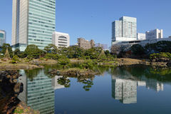 Urban park in Tokyo, Japan. View of tokyo cityscape with the lake in Tokyo, Japan Stock Photos