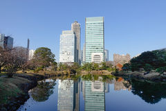 Urban park in Tokyo, Japan Royalty Free Stock Photo