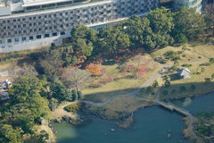 Urban park in Tokyo, Japan. View from top of the building Stock Photo
