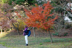Urban park in Tokyo, Japan Royalty Free Stock Images