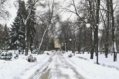 Urban park in winter Stock Images