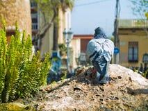Urban pidgeon. An urban pidgeon in Barcelona, Spain Stock Images