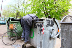 Urban Poverty. A homeless man looking for food in a garbage dumpster Stock Photography