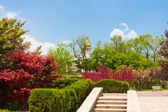 Urban public garden. Spring time Royalty Free Stock Images