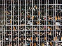 Urban Renovation Garbage behind Solid Metal Grid Stock Photo