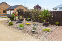 Urban rockery garden with grasses and shrubs. Stock Photos