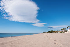 Urban sandy beach, landscape. Sandy beach with blue sky, clouds and palm trees alley Stock Photo