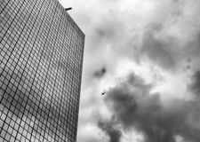 Urban skyline with plane flying over business skyscrapers. High-rise office buildings, black and white Stock Images