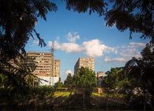 Urban som arbeta i trädgården i havannacigarr Arkivfoto