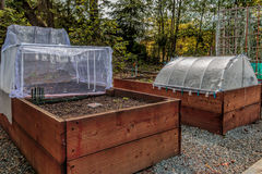 Urban som arbeta i trädgården lyftta sängar och växtskärmbeskyddanden arkivbilder