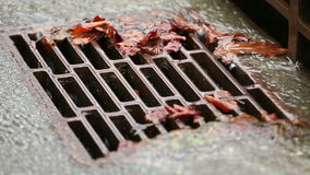 Urban Storm Drain. Water from heavy rain flows into a storm drain stock footage
