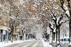 Urban street in a snow storm Royalty Free Stock Photo