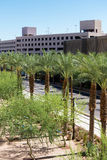 Urban streetscapes and buildings in downtown Phoenix, AZ Royalty Free Stock Photos