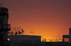 Urban sunrise Stock Photography