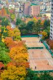 An urban tennis court surrounded by trees in autumn colors. top view. south korea