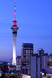 Urban view of Auckland Sky tower in colors at dusk Royalty Free Stock Photography